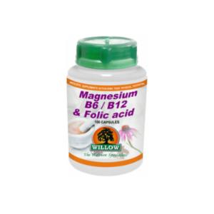 Magnesium B6 B12 Folic Acid